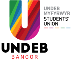 Undeb Bangor Council Elections