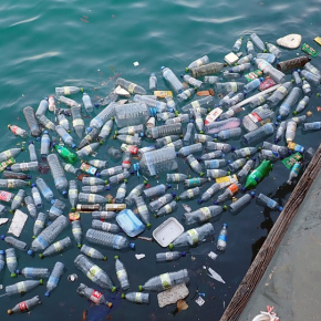University Signs Global Commitment To Bring Plastic Pollution To An End