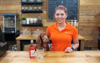 Dog-Friendly Cinema Opened In Conwy County