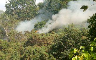 Bangor Mountain is on fire again