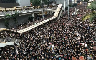 The Hong Kong Protests