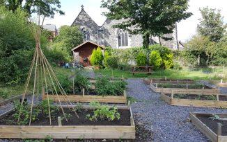 Bangor's New Healing Garden!